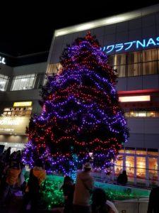 新鎌ヶ谷駅前のツリーが点灯しました